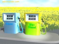 biocombustible2.jpg